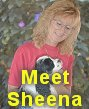 Meet Sheena Wiseman, Cocker breeder
